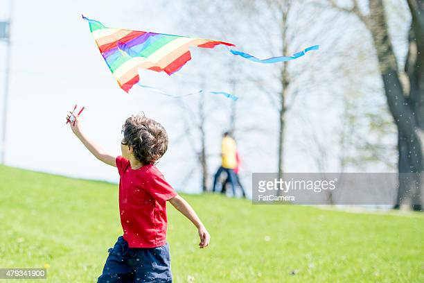 Piccolo ragazzo che sventola bandiera sul parco