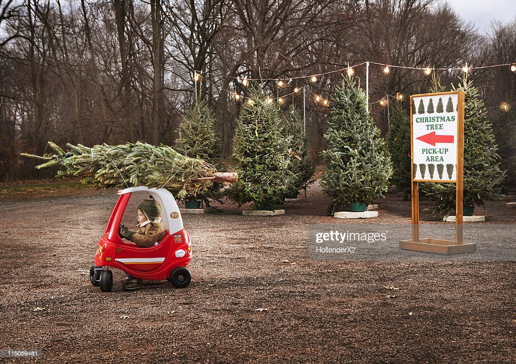 Little boy with Christmas tree on top of toy car