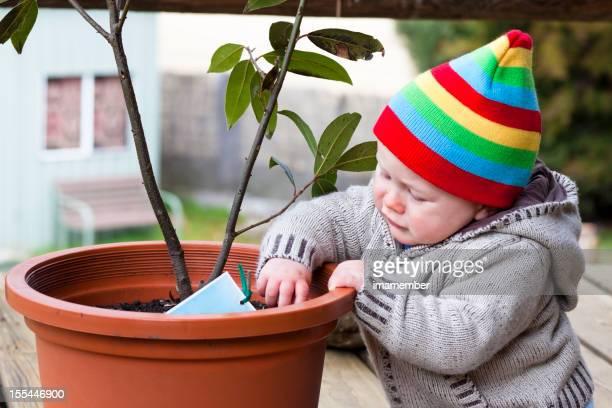 Little boy con coloridos beanie jugando con potplant