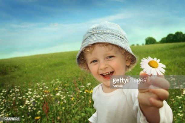 Kleiner Junge mit Daisy Blume