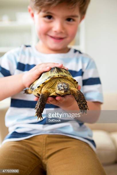 Little Boy with his Pet Tortoise Tommy
