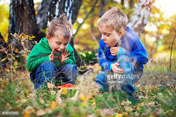 Little boys found an autumn toadstool