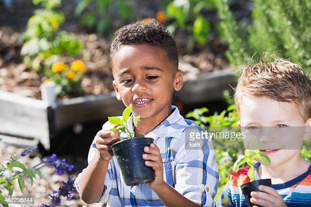 Little boys in community garden
