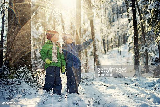 Little boys in winter forest