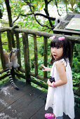 Little girl and red pandas