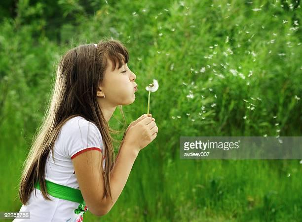 Little girl blowing a dandelion.