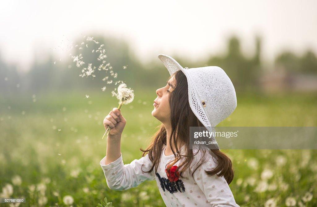 little girl blowing dandelion : Stock Photo