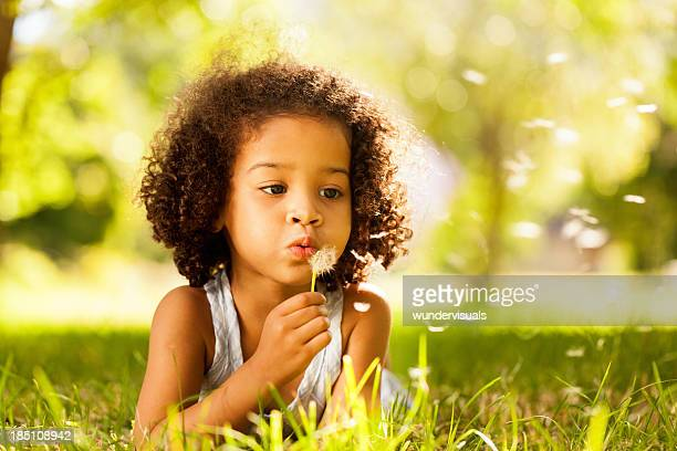 Little Girl Busy Blowing Dandelion Seeds In the Park