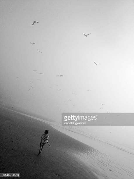 Little Girl Chasing Seagulls on Beach