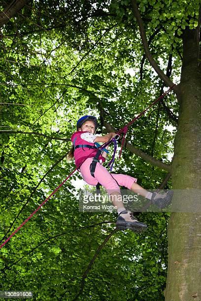 Little girl climbing a tree, Upper Bavaria, Germany, Europe
