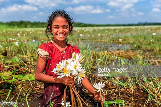 Little girl collecting lotus flowers, Ceylon