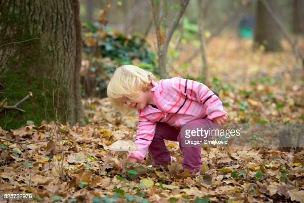 Little girl collecting parasol mushrooms