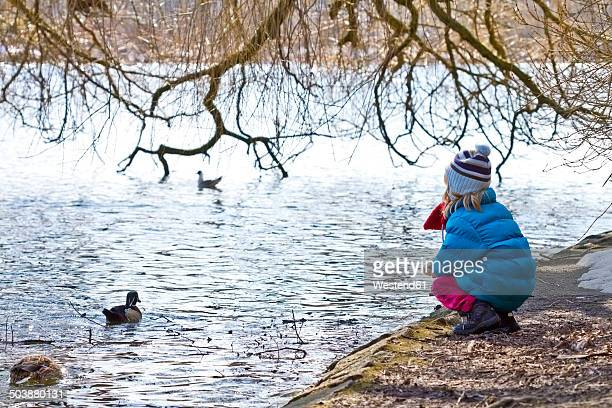 Little girl crouching at waterside of pond