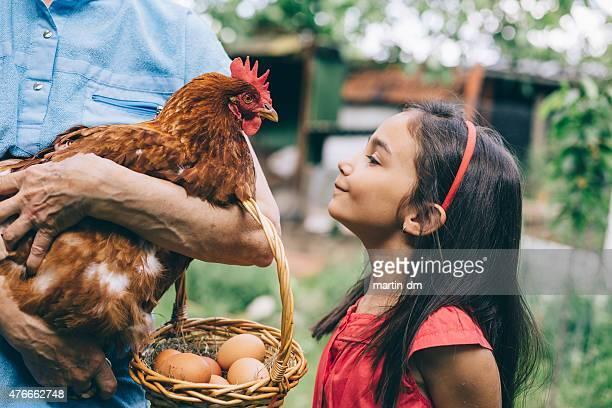 Little girl enjoying a hen