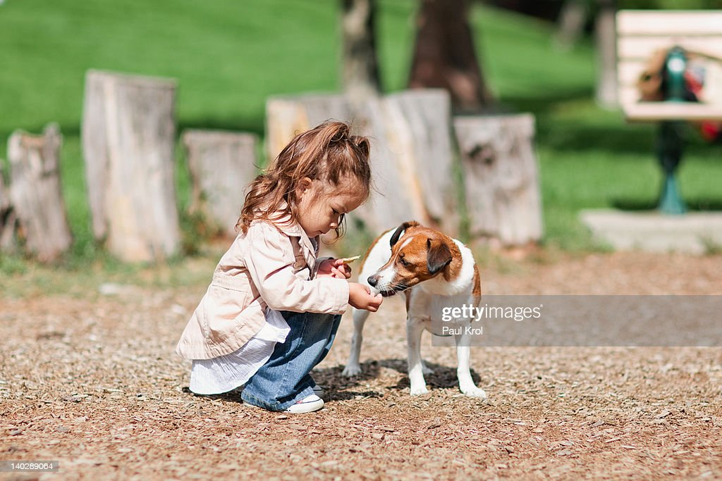 Little girl feeding dog : Stock Photo