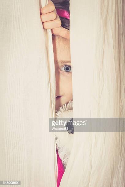 Little girl hiding behind curtain with her teddy bear