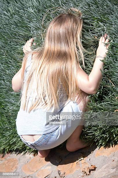 Little girl hiding in lavender plant