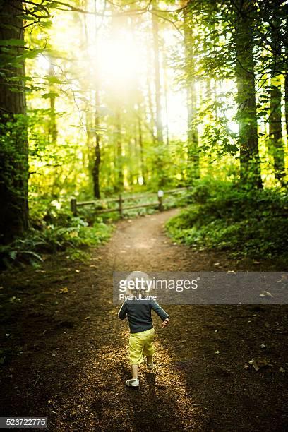 Petite fille de randonnée-marche en forêt