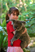 Little girl holding a Koala in Queensland, Australia