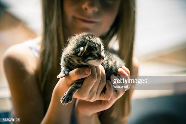 Little girl holding kitten in her hands