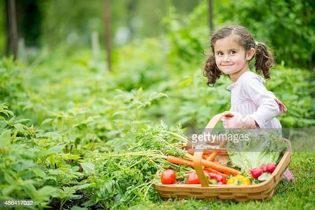 LIttle Girl Holding Vegetable Basket