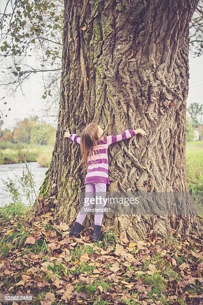 Little girl hugging old tree