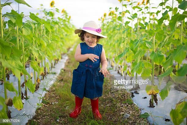 Little girl in sunflower field