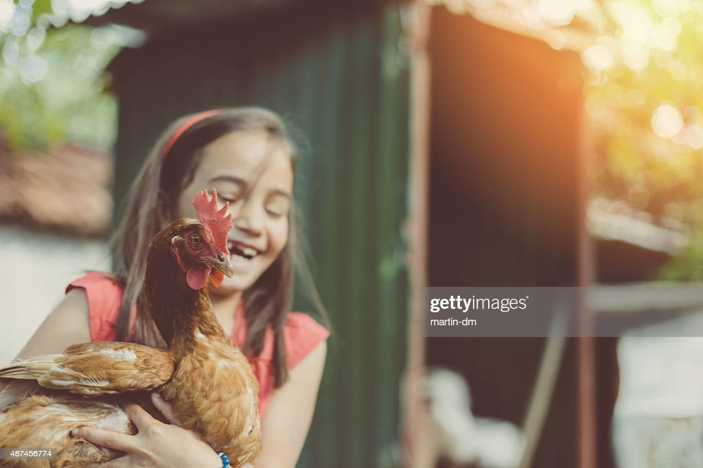 Little girl in the coop : Stock Photo