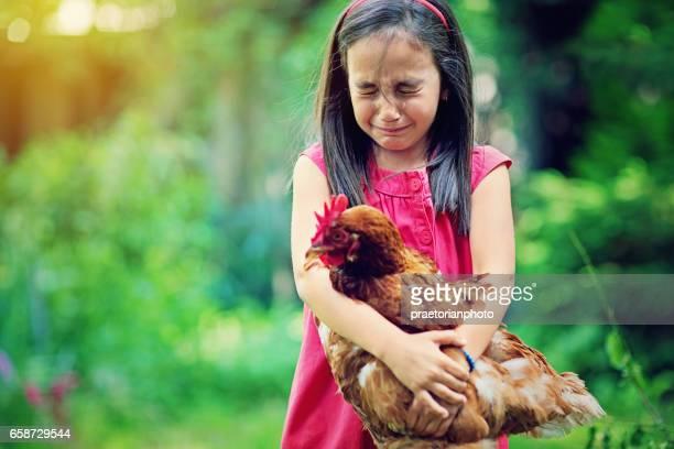 Petite fille pleure jusqu'à la tenue de poule à la ferme