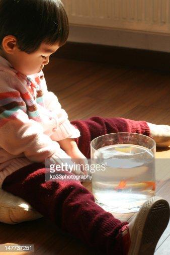 Aquarium Floor Stock Photos And Pictures Getty Images