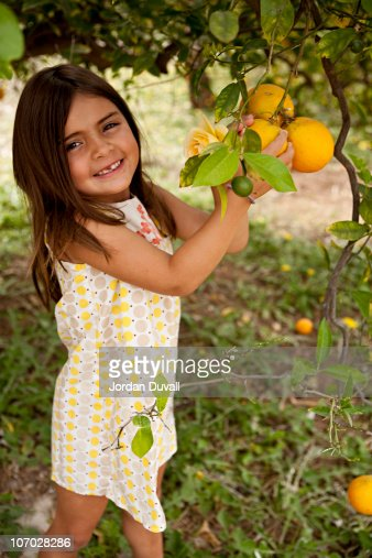 Little girl on an orange picking afternoon : Stock Photo