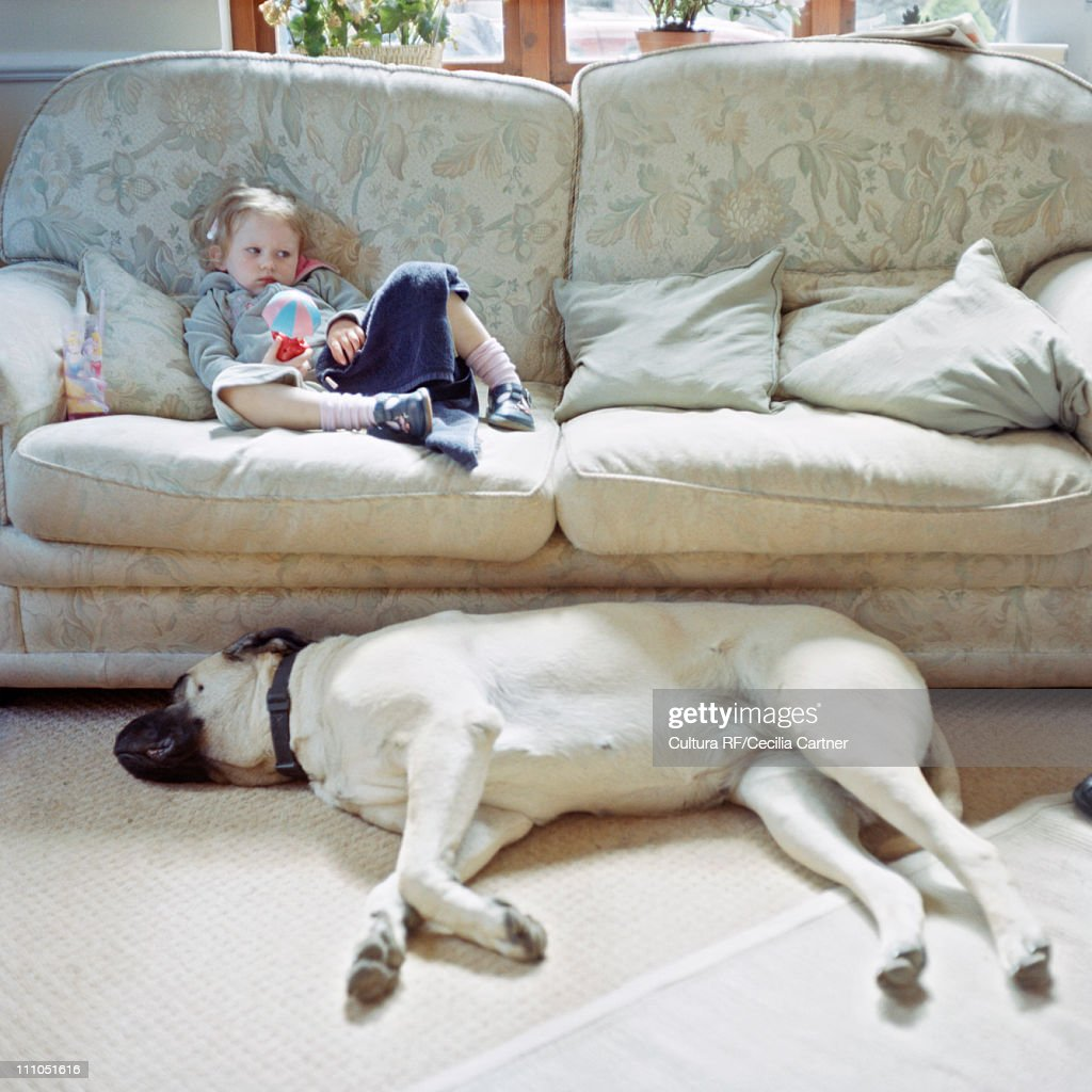 Little girl on couch next to big dog