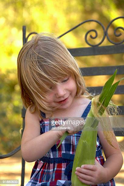 Little Girl Pealing Fresh Corn on the Cob