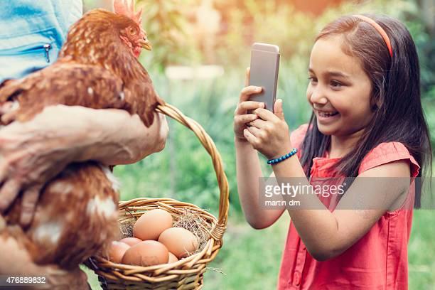Kleines Mädchen Fotografieren ein hen