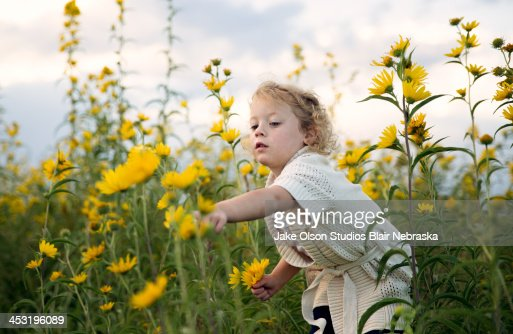 Little girl picking flowers : Stock Photo