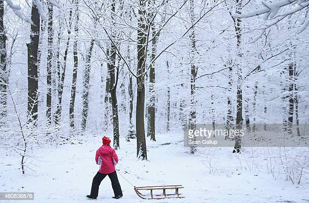 A little girl pulls a sled through a snowcovered forest in a park in Zehlendorf district after the season's first snowfall on December 26 2014 in...