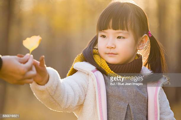 Little girl reaching out to receive a leaf