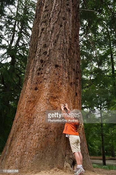 Kleines Mädchen greifen zu dem hohen tree