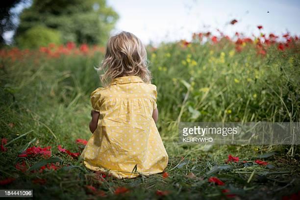 Little girl sat in a poppy field