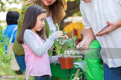Old man and young girl shopping fotograf as e im genes de for Imagenes de jardineria