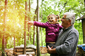 Granddaughter pointing with finger her grandfather something in forest.