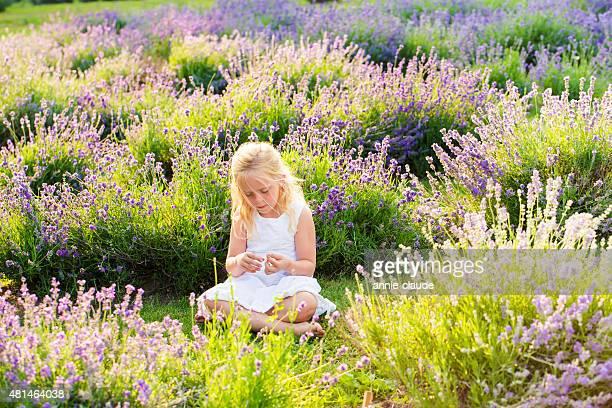 Kleines Mädchen sitzt in einem Lavendel-Feld