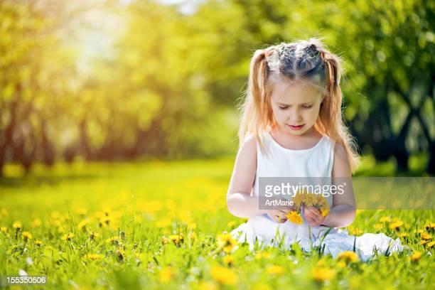小さな女の子に座って、フィールドのタンポポ