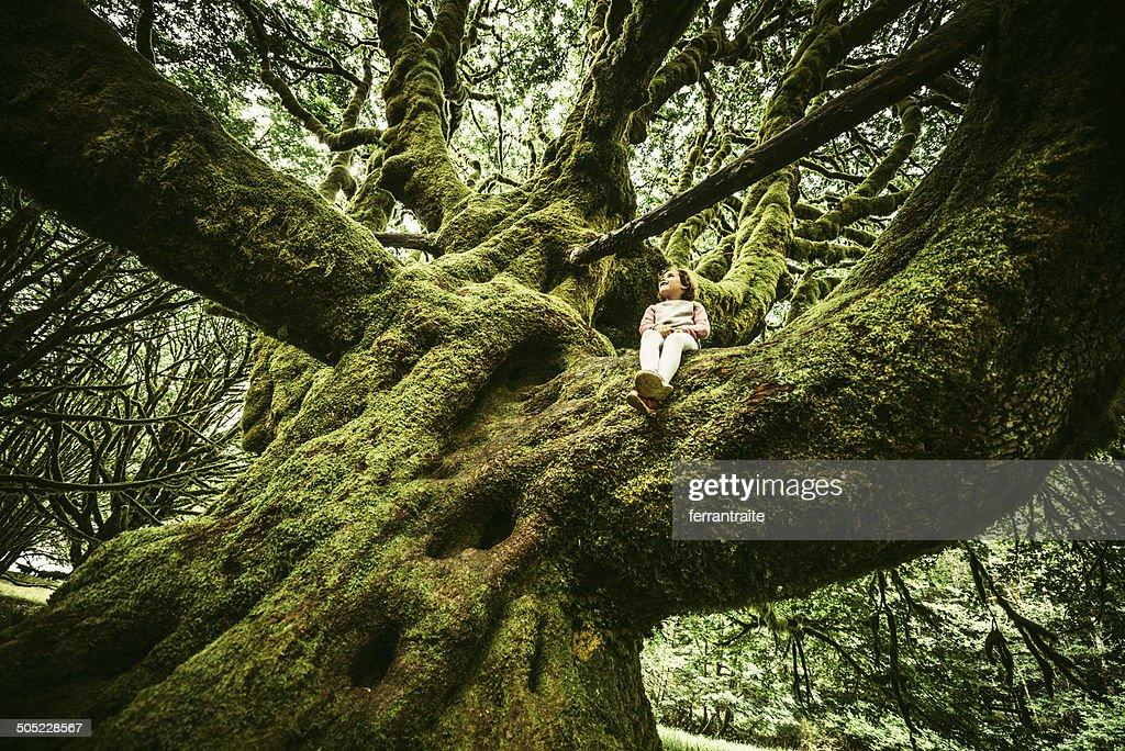 Little Girl Sitting on Centennial Tree