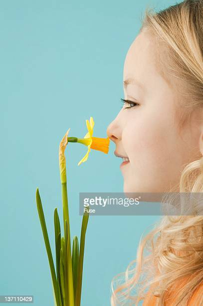 Little girl smelling a daffodil