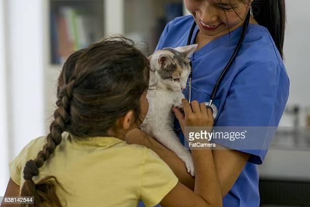 Little Girl Taking Her Kitten to a Vet