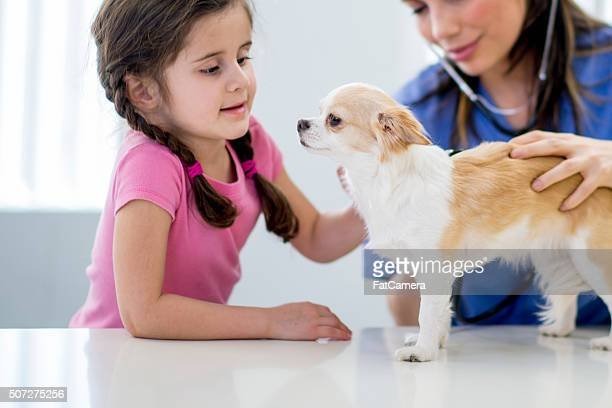 Little Girl Taking Her Puppy to the Vet