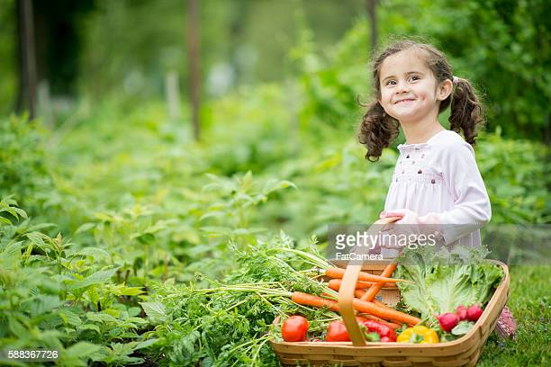 Little Girl Tending to the Garden