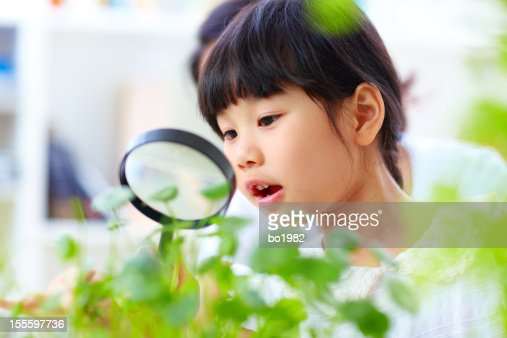 little girl using magnifying glass watching plant