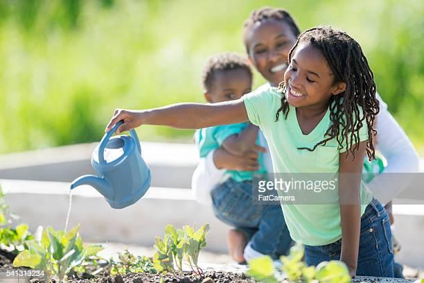Menina de abeberamento uma Horta
